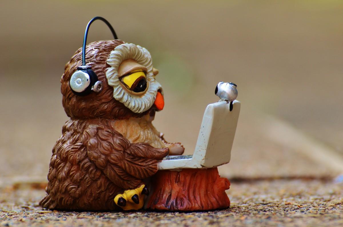 owl_computer_headphones_funny_laptop_notebook_device_technical_device_692382.jpg_d-73510-2f1bba.jpeg