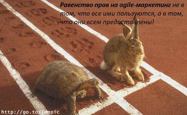 Agile_3-26261-b2582e.jpg