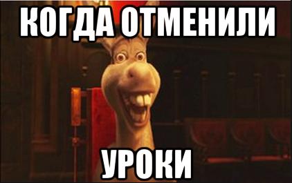 osel_iz_shreka_159188009_orig-20219-c8ed72.png